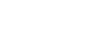 Logo_IMVI_